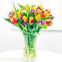 Seasonal bouquet of tulips